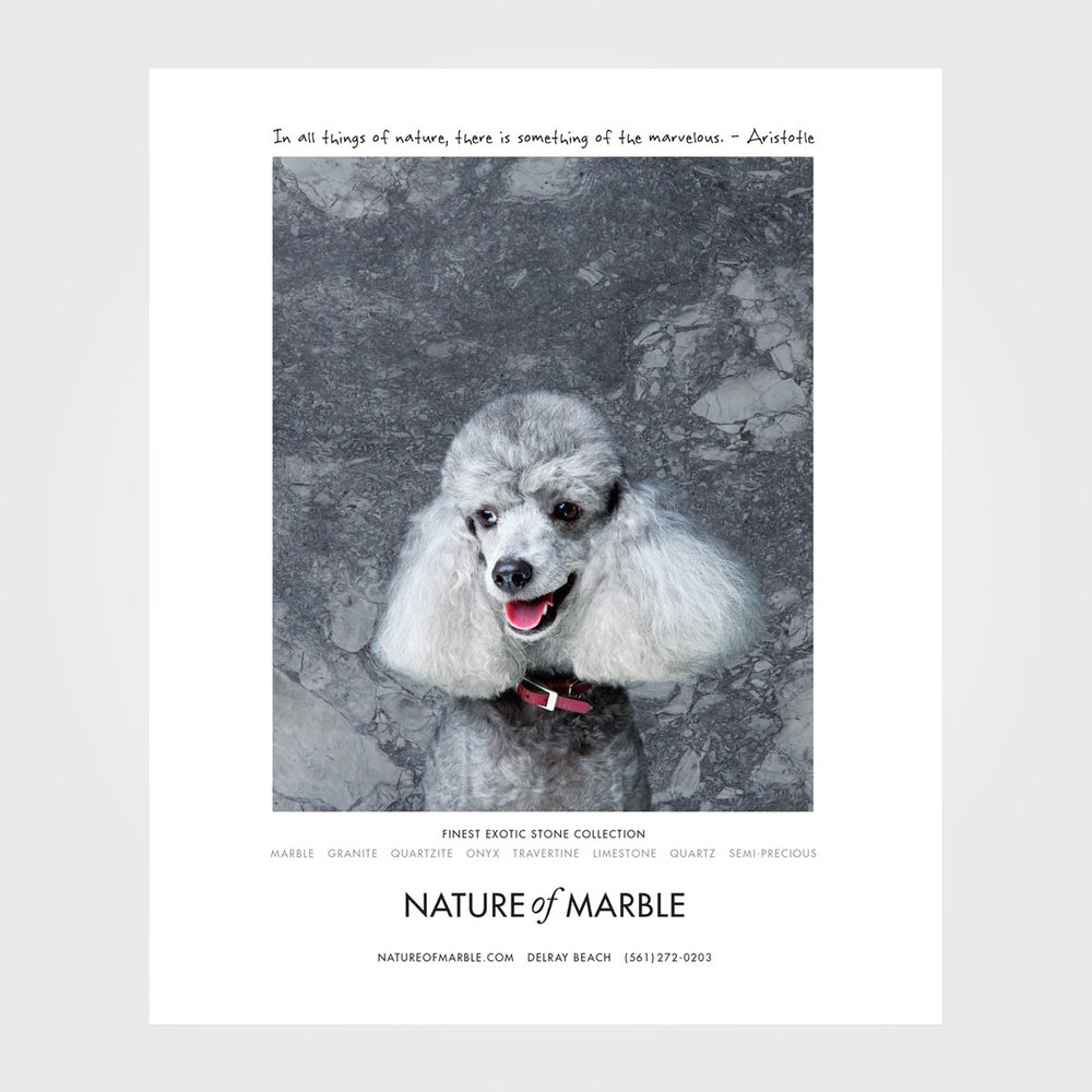 "Magazine ad design for Nature of Marble, Delray Beach, FL - part of a ""beautiful animals"" ad series"