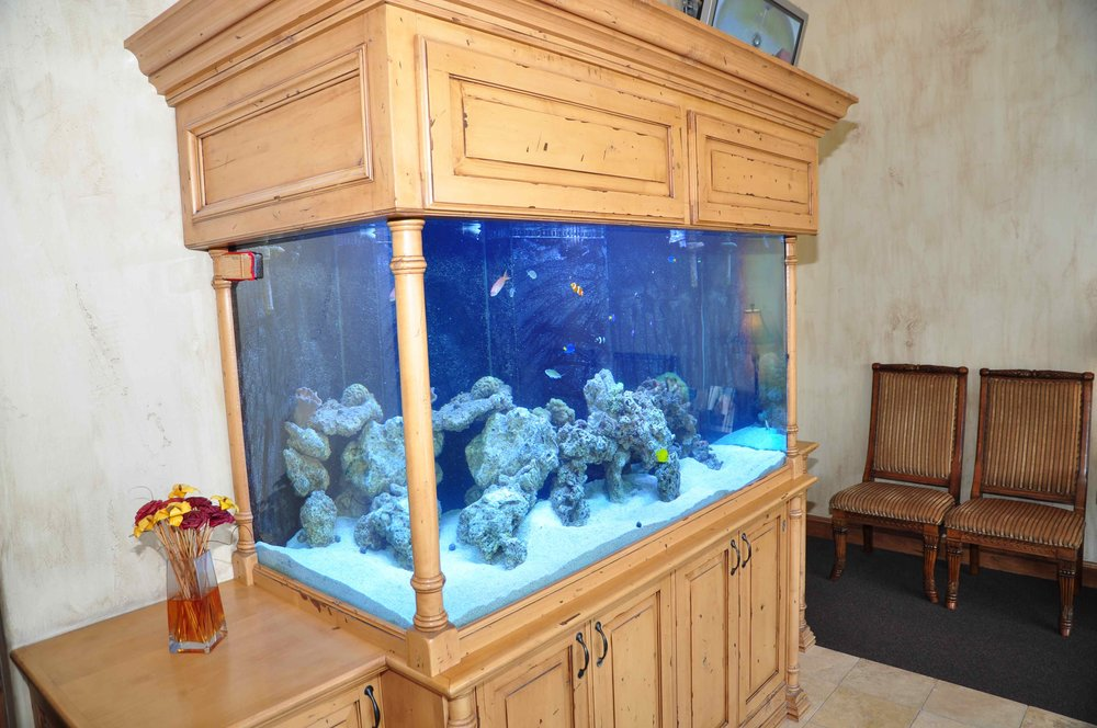 Aquarium at Cornerstone Dental Care