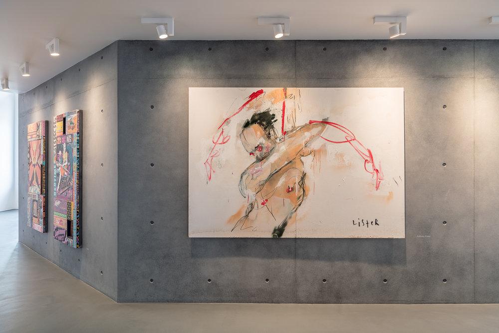 Ausstellungsansichten_Sammlung Sanziany_002_web.jpg