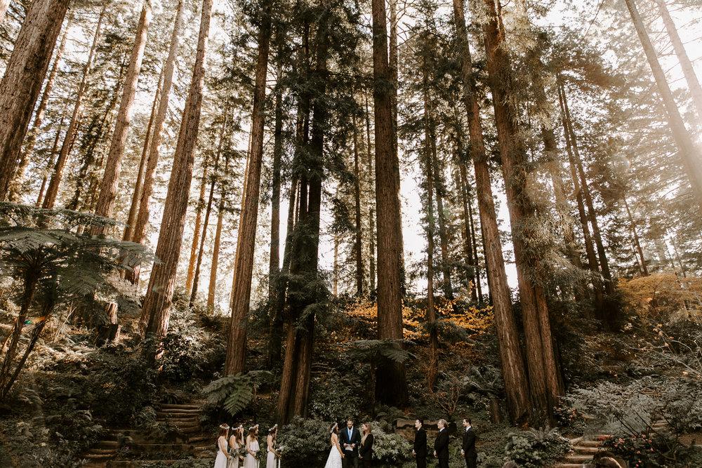 nestldown-redwood-wedding-los-gatos-120.jpg