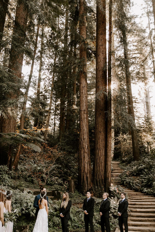 nestldown-redwood-wedding-los-gatos-125.jpg