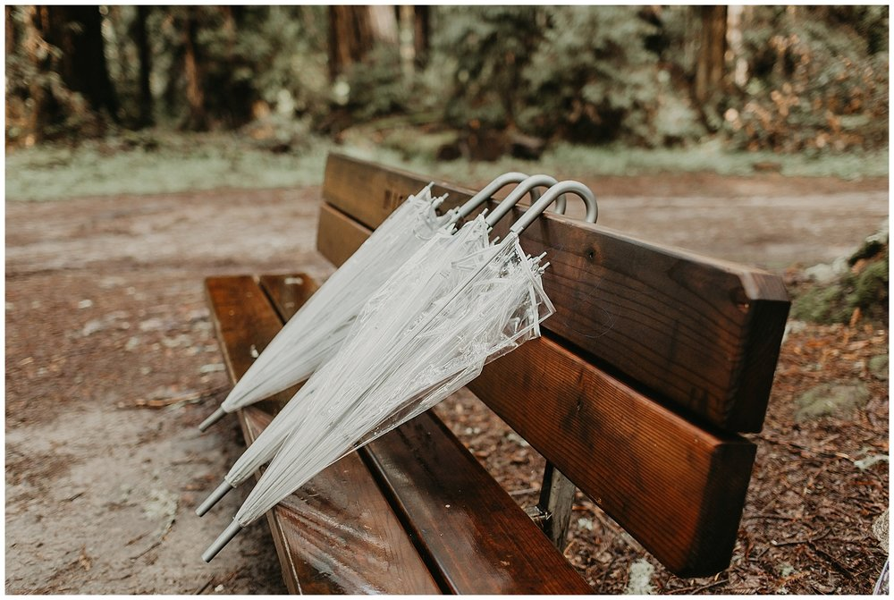 redwood elopement wedding santa cruz california_0094.jpg