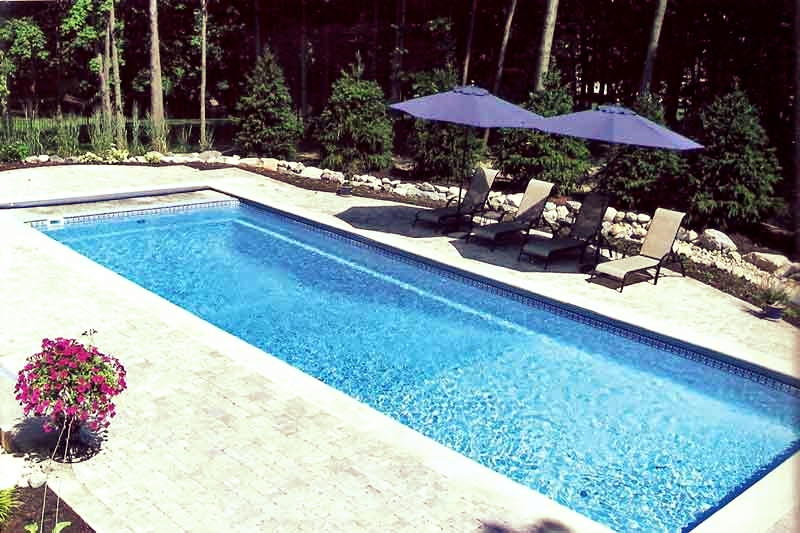 Rectangle Shape Pools Lifestyle Fiberglass Pools East Bay