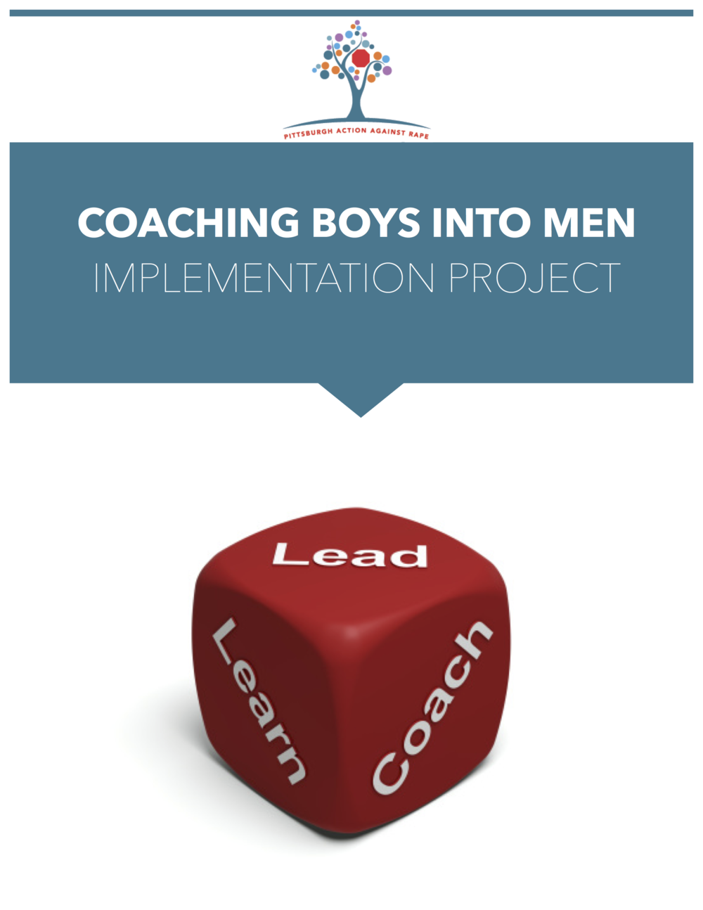 This is page 1 of the end-of-project report. It was amazing to lead, learn, and coach alongside my social change collaborators at PAAR as we evaluated their implementation of Coaching Boys Into Men. (I am easily excited by evaluation, in general, but this project ALL-CAPS JAZZED ME UP.)