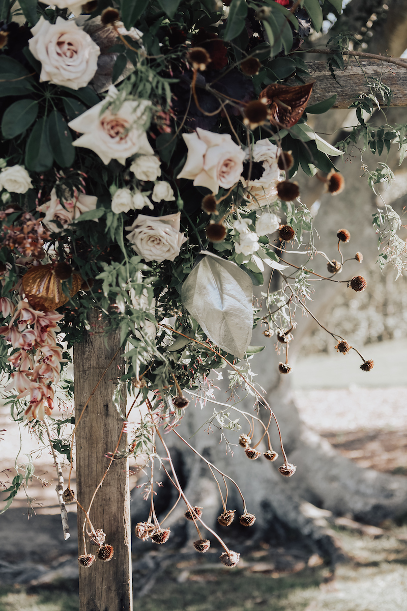Bloodwood Botanica | Dark moody wedding flowers