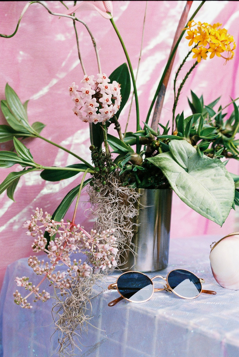 Bloodwood Botanica | Modern Tropical Floral Design