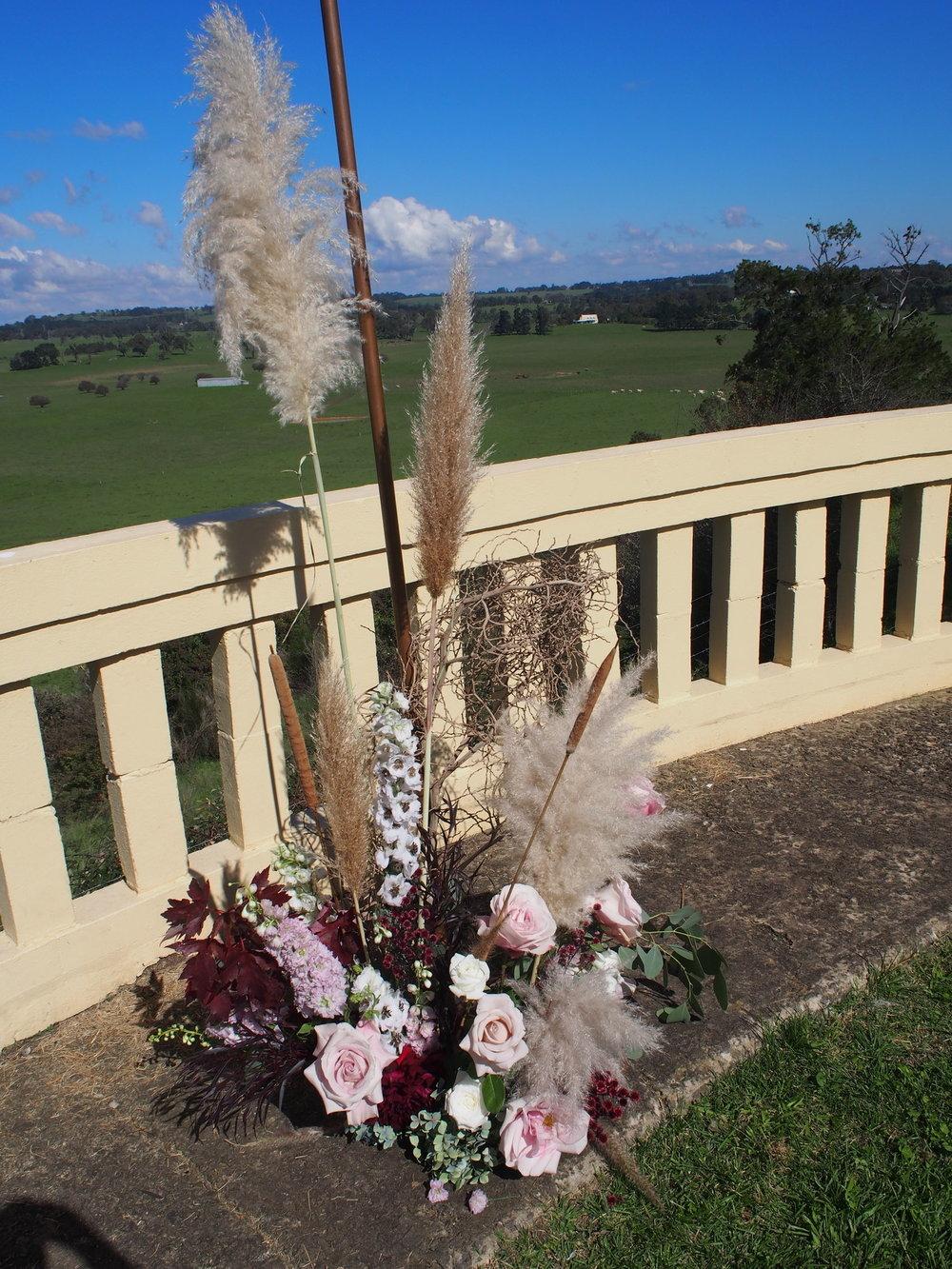 Bloodwood Botanica | Fluffy Pampas grass Copper Arbour