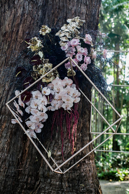 BLOODWOOD BOTANICA | TREE PIECE