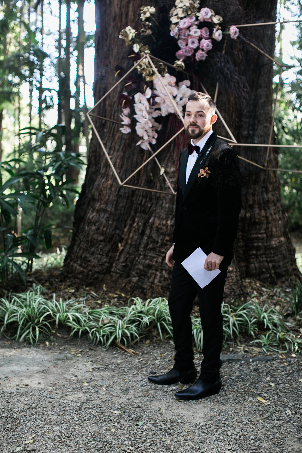 Bloodwood Botanica | Ed at the alter