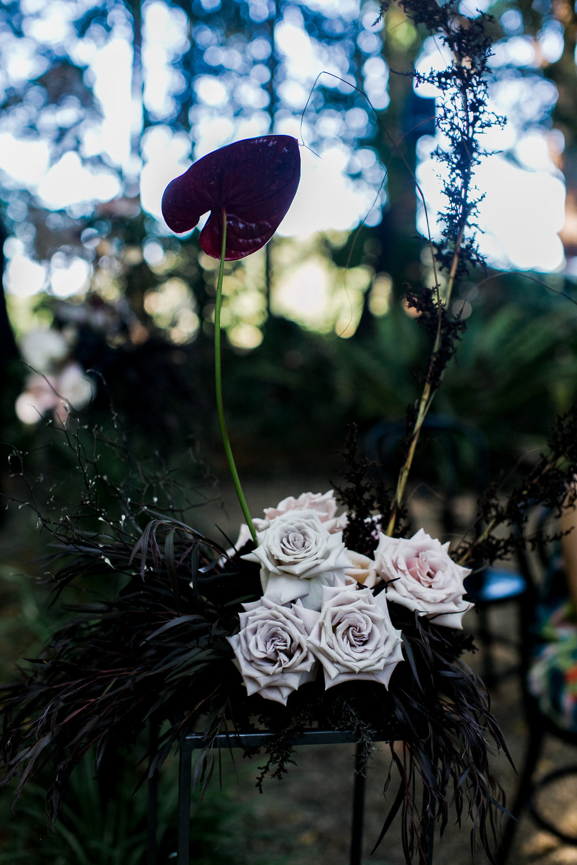 Bloodwood Botanica | aisle liners