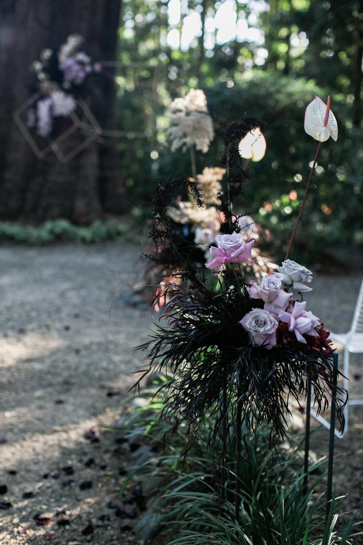 Bloodwood Botanica | Aisle