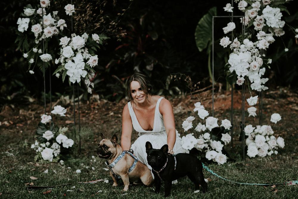 Bloodwood Botanica | Plinth Altar Arbour puppies dog
