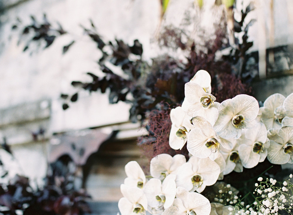 Bloodwood Botanica    close up orchid altar
