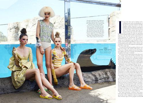Fashion+Zoo-3.jpg