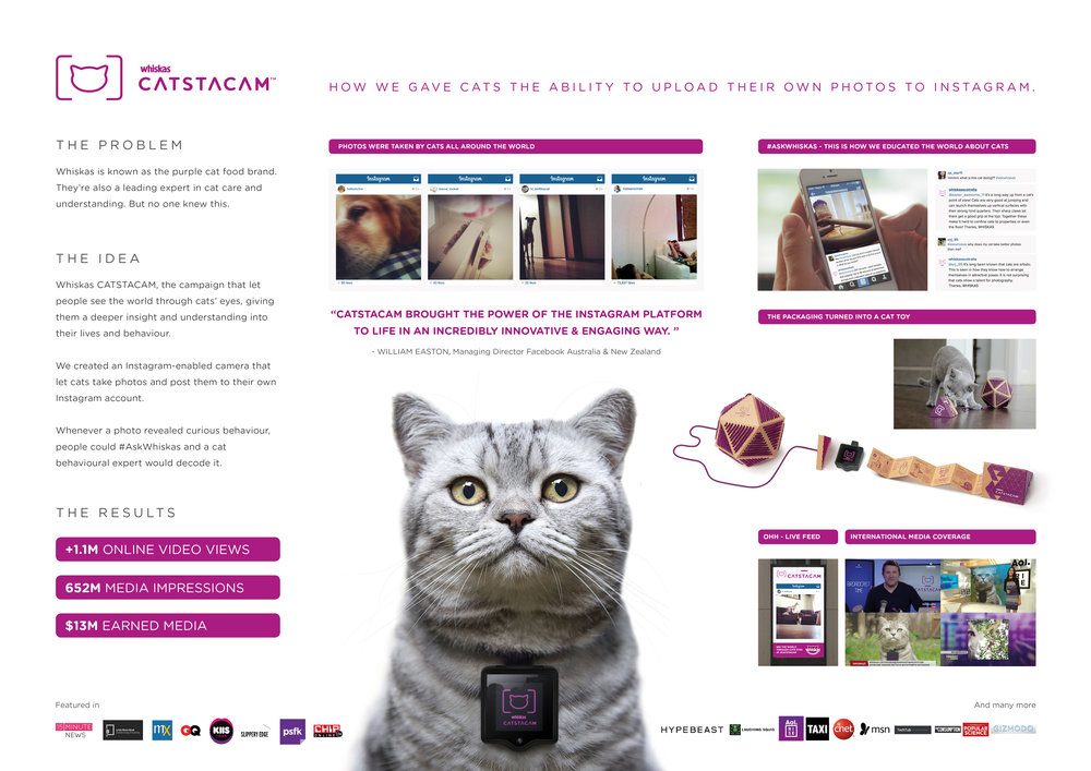 Catstacam-Awardboard-2.jpg