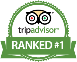 tripadvisor-rank-1-in-Madarao.png
