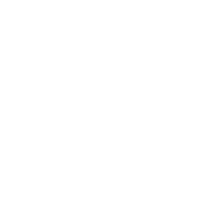 NV-Agency.png