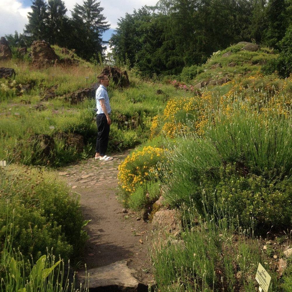 botanical garden .jpg
