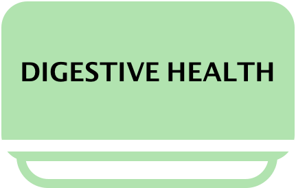 Digestive-health-Glebe-Point-Acupcunture