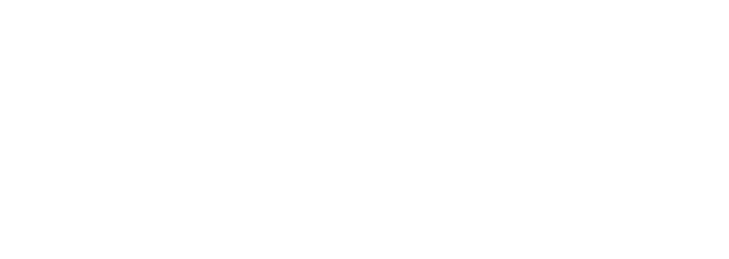 Thurin Law Group, PLLC - Legal & Business Consulting