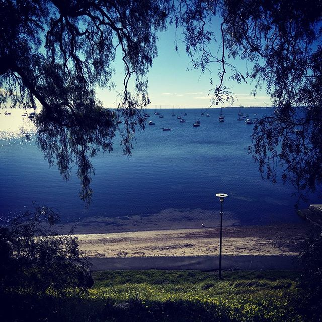 Morning run. #fitlife #geelongweekender