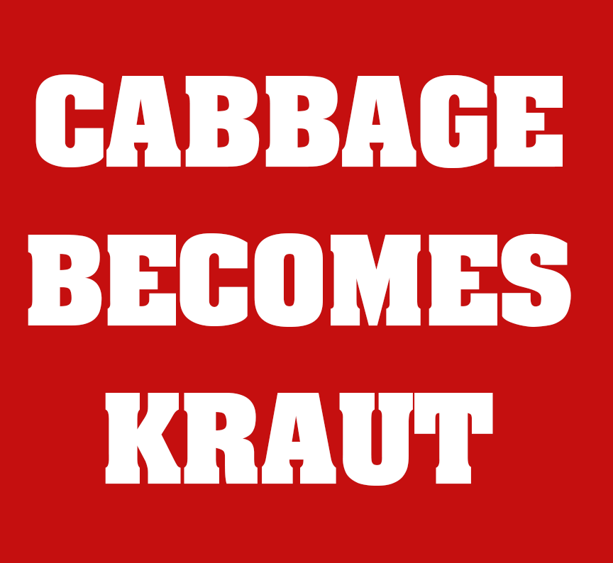cabbagekraut1.png