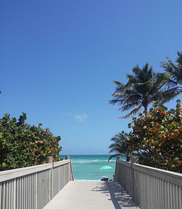 Beach more worry less..#vacationmode #countdown #travel #palmtrees #beach #tan #beachview