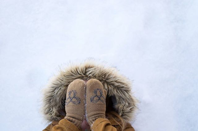 How we all feel on a monday; especially today it's #bluemonday which is said to be the most depressing day of the year and I'm sure the travel site is sick of me. #winterwonderland #winterblues #canadianstyle #winter #travel #takemeaway #cottage