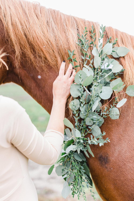 Maternity-photos-horse-garland-snow-wakefield-ontario-ottawa-115.jpg