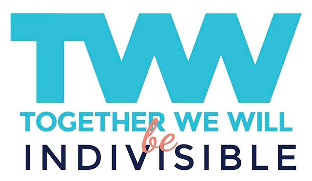 TWWWT uses the Indivisible Guide as a tool for engaging our MOC!