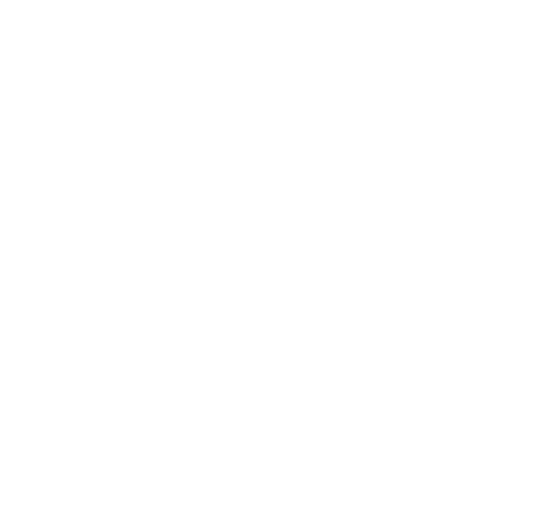 Fort Orange Brewing