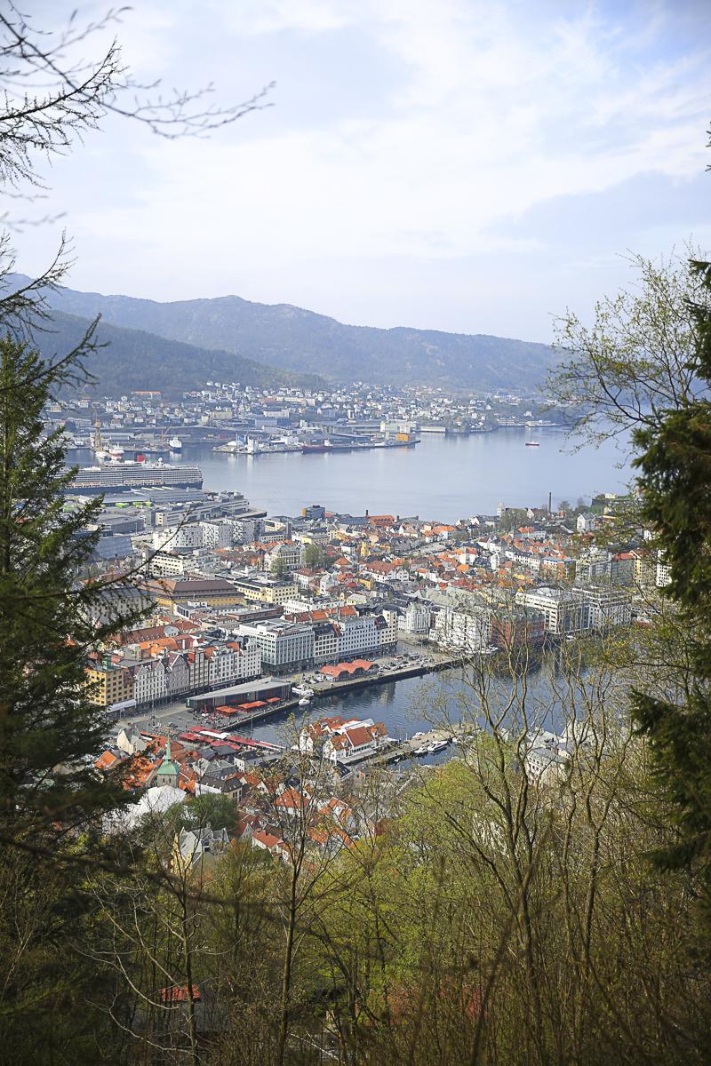Bergen View Up-0485.jpg