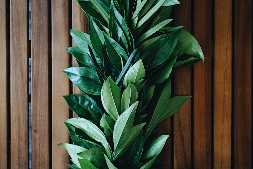 cocculus and podocarpus garland on coffee table.jpg