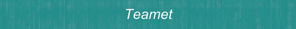 Rubrik Teamet.png