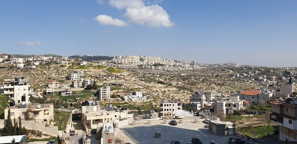 palestine 7.jpg