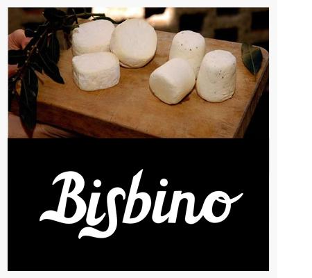 BisbinoZincarlin.jpg
