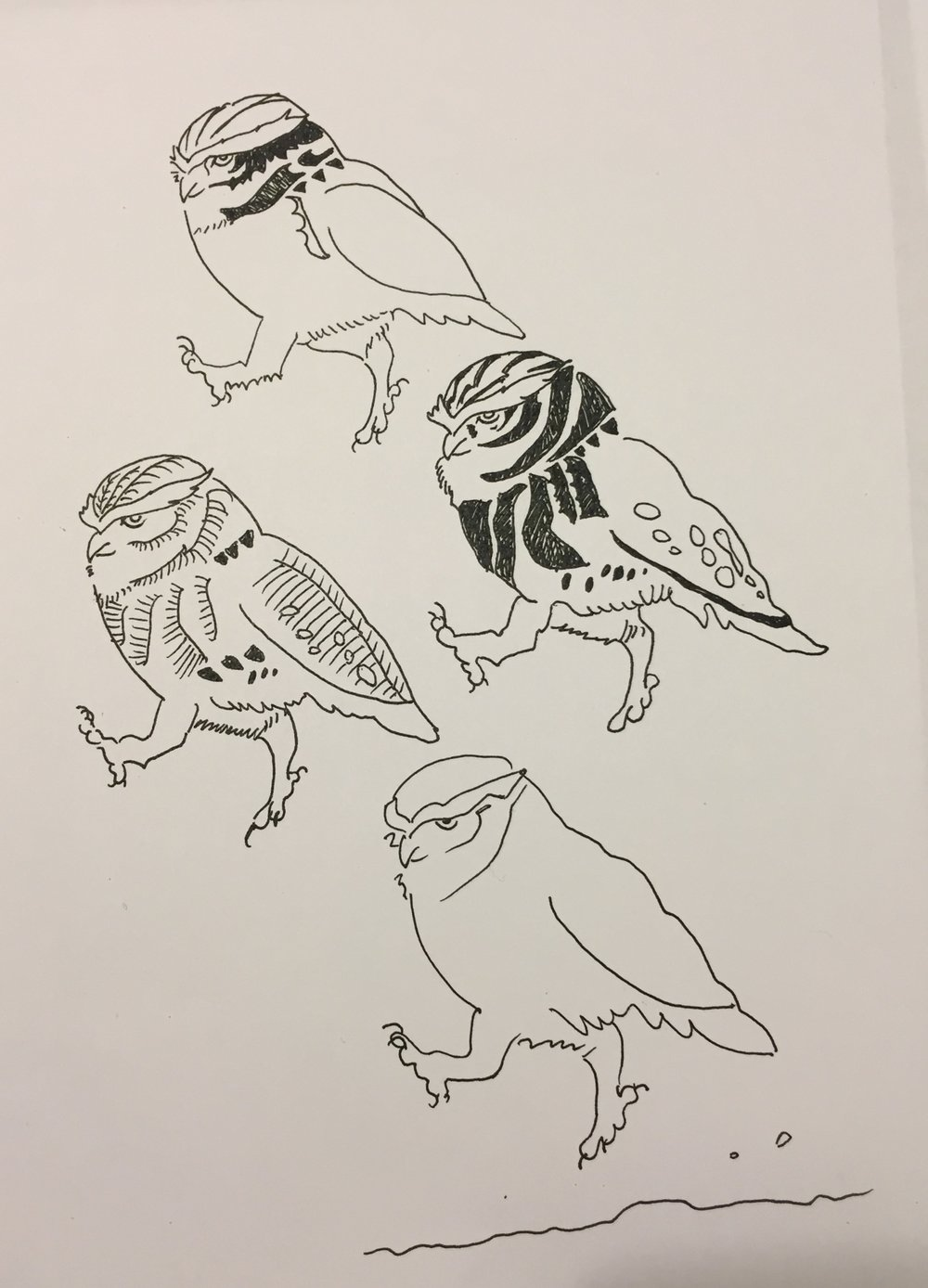 Owls March  , drawing by Jubilant Moy
