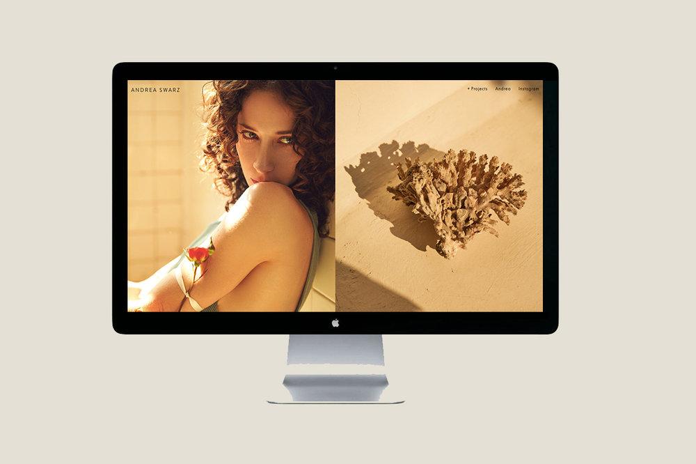 ANDREA SWARZ WEB 1.jpg