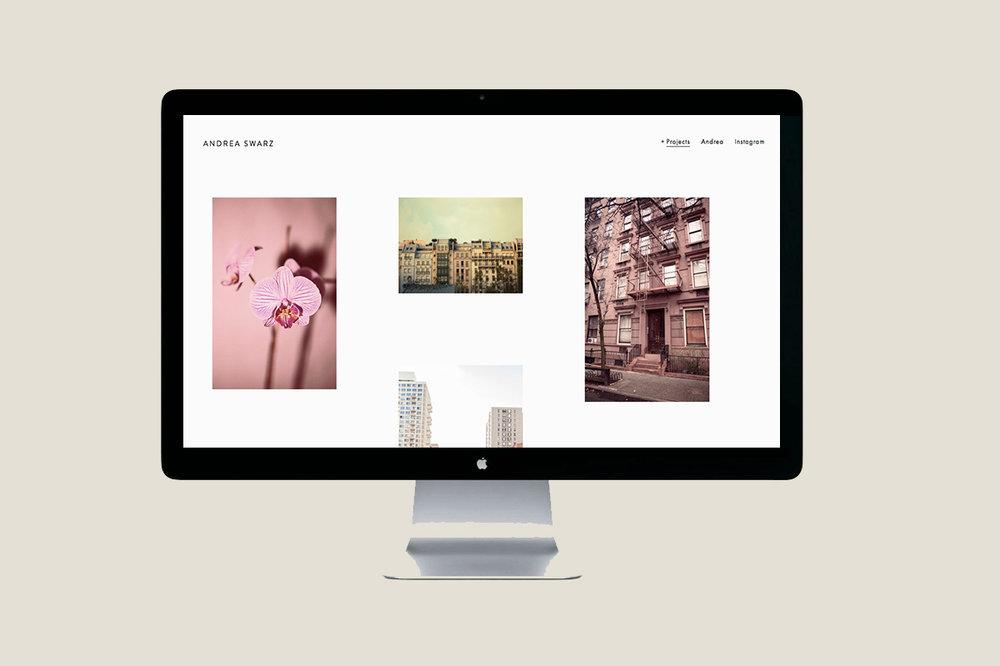 ANDREA SWARZ WEB 3.jpg