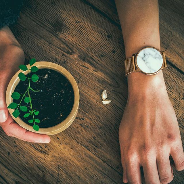 Bianco Gold • 2018 • Nunc A gift can come in many forms. Ours in a reusable package, a seed that reminds you that all great things take time and a promise that our footprints get compensated. 🎄 Time is now. Be present. • #nunc #nunclife #timeisnow #preciousfairchristmas
