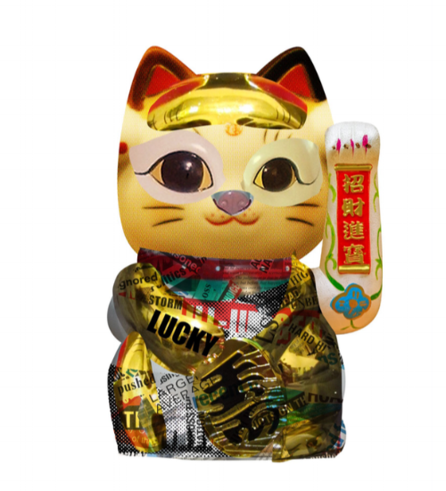 chineseCat.png