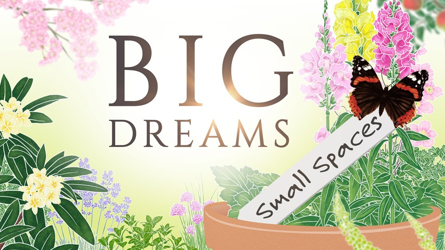 Big Dreams Small Spaces
