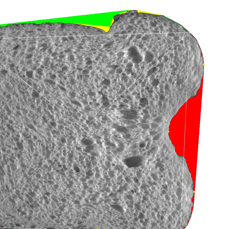 (Above) Measuring concavity in bread