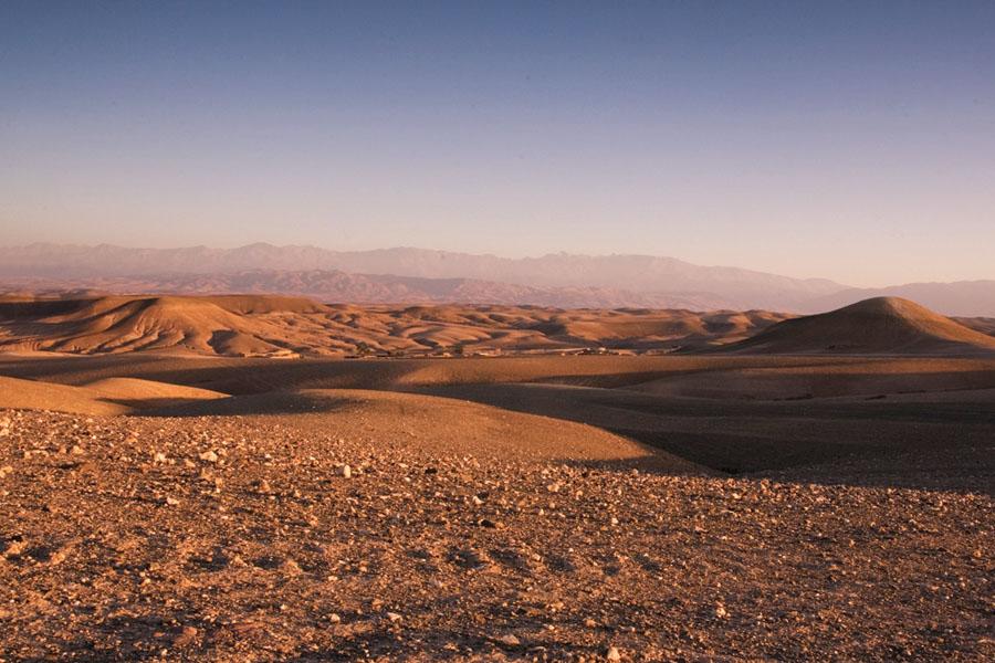 yoga ørken.jpg