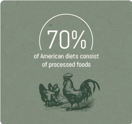 70%-of-American-diets-consist-of-processed-foods.png