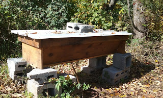 Top Bar Hive built by IV