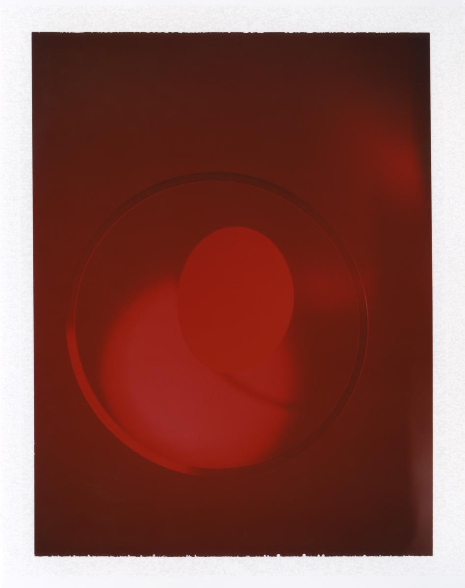 ALINEA DIPTYQUE-ROUGE , 2017, Polaroid Color FujiFilm, 10.5 x 8.5 cm, esemplare unico
