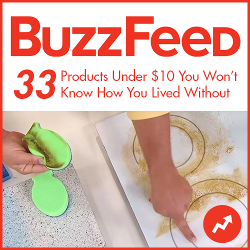 dishfish-dual-scrubber-review-tb-buzzfeed-2.png