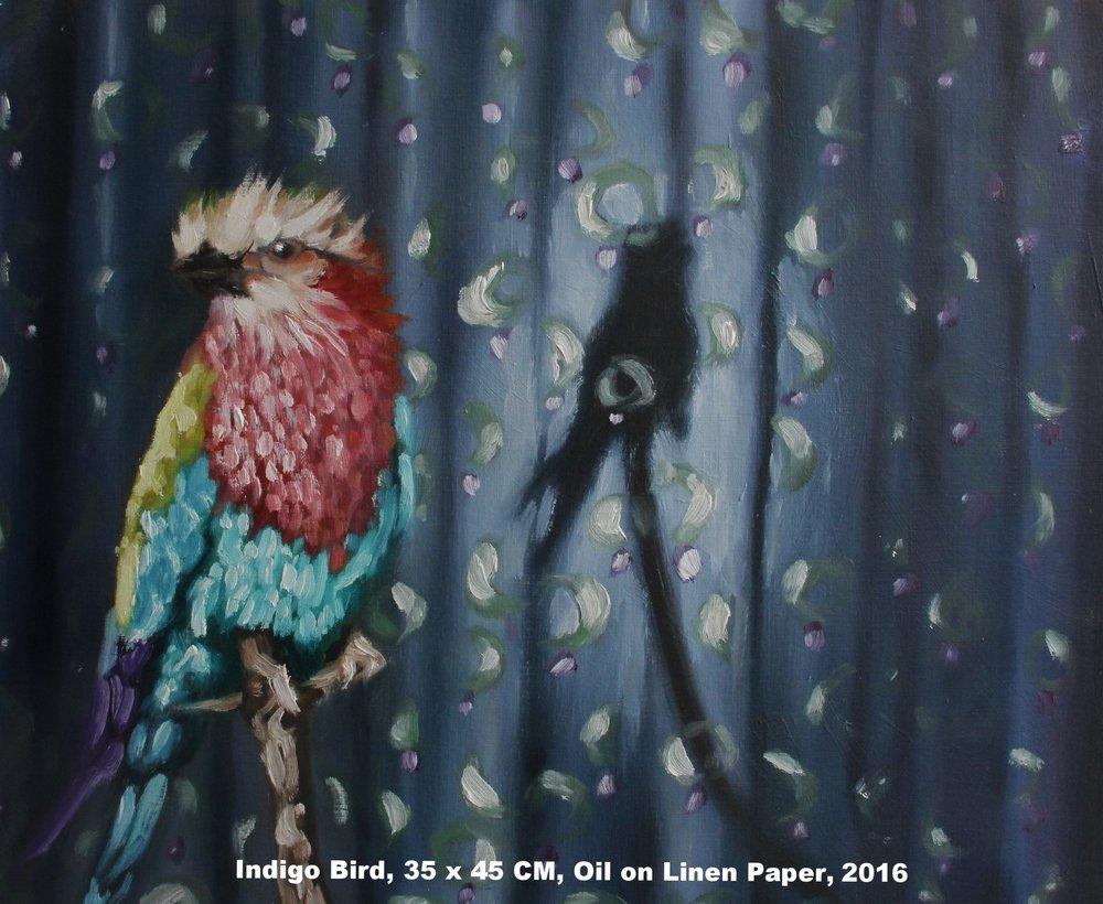 Indigo Bird.jpg