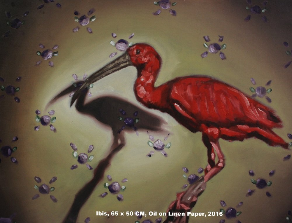 Red Ibis.jpg